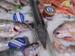 Оптимисты и пессимисты Международного рыбопромышле