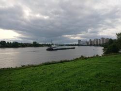 Санкт Петербург 2019.