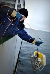 Работы в Карском море