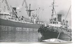 Паровые буксиры проекта 730. Архивные фото