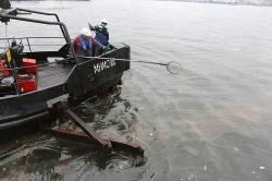 Морской субботник прошел во Владивостоке