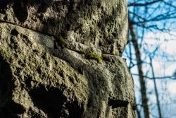 Монумент, где хранилась капсула времени последние