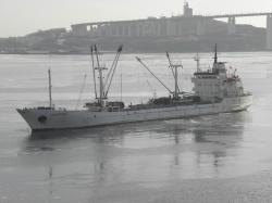 Владивосток 2017 г.