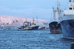 Мурманский морской рыбный порт